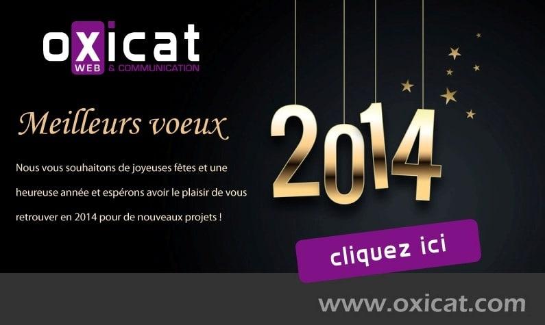Carte-Voeux-2014
